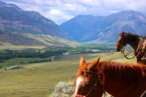 Double Diamond X - Day Rides and Ranch Stays :: Located near Cody, experience comfortable cabin lodging, incredible views and horseback riding! Dinner and drinks at the onsite restaurant, Southfork Drifter.