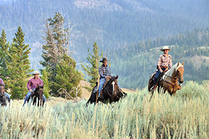 East Yellowstone Lodges and Guest Ranches