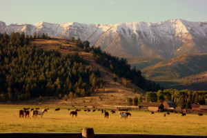 All-Inclusive Dude Ranch Lodging near Yellowstone